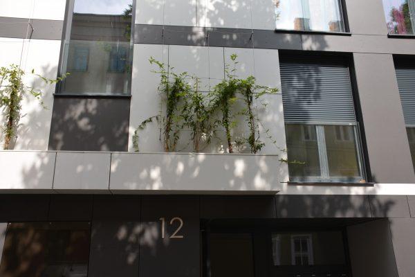 ATM_Neubau Mehrfamilienhaus ULÖ allg_03